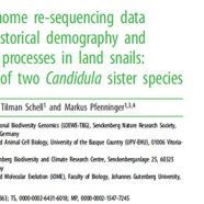 Our last paper is out!